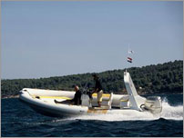 rent a exclusive speed boat - FLYER 646 Golden with Honda 150VTEC HP