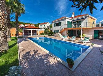 Rustic palm tree villa with swimming pool in Sumartin, Brač Island