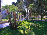 The park of the luxury villa in Dubrovnik for rent