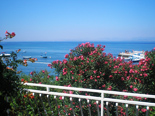 View from upper flor in holiday villa with pool in Mirca on Brac Island