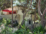 Another view on Hvar renatal villa through pine trees and other vegetation