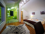 Dalmatia Luxury Villa in Jesenice