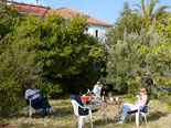 Enjoying the orchard in front of this rental house in Stari Grad